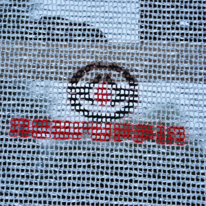 logo-bearbeitet